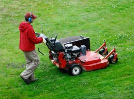 How about lawn mower buying guide